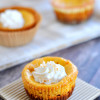 Thanksgiving Recipes - Pumpkin Cheesecake Bites