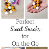 Perfect Sweet Snacks on the Go