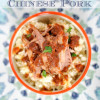 Crockpot Paleo Chinese Pork
