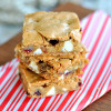 Cranberry White Chocolate Blondies