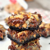 Coconut Chocolate Magic Bars