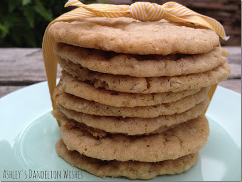 Ashley's Dandelion Wishes - Oatmeal Snickerdoodles