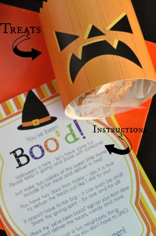 Boo Bag Insides with Label