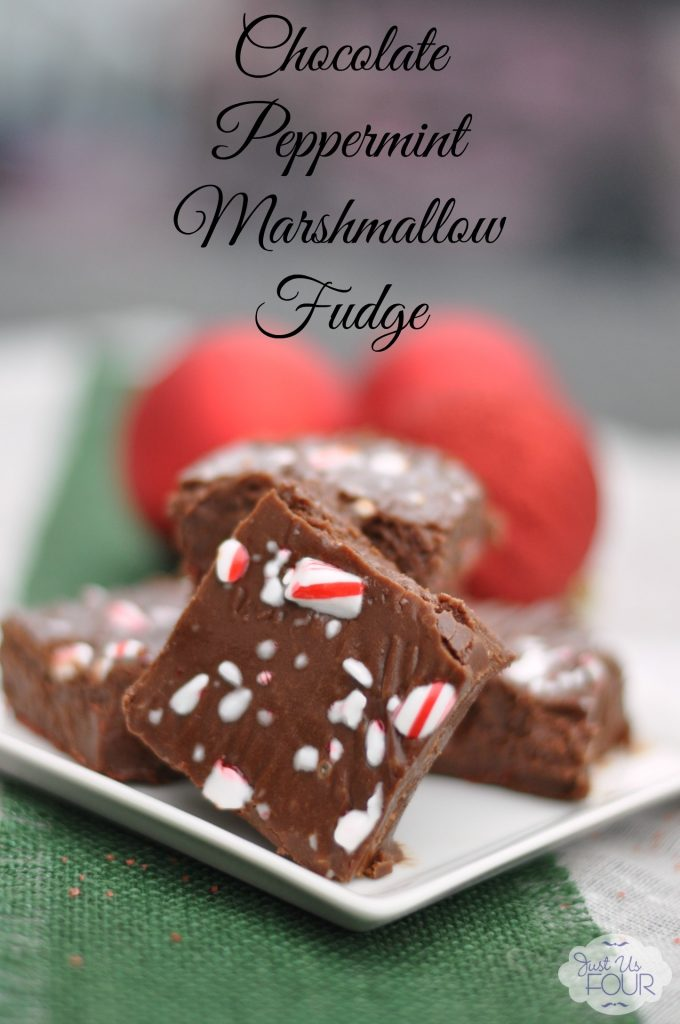 Peppermint Marshmallow Fudge with Label_wm