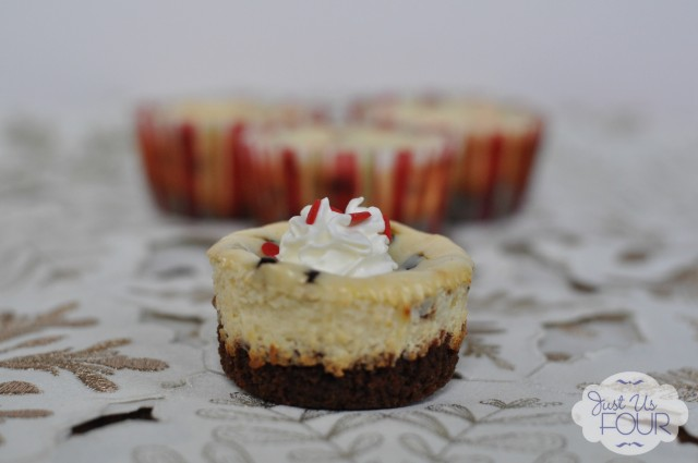 Peppermint Chocolate Chip Cheesecake No Wrapper_wm
