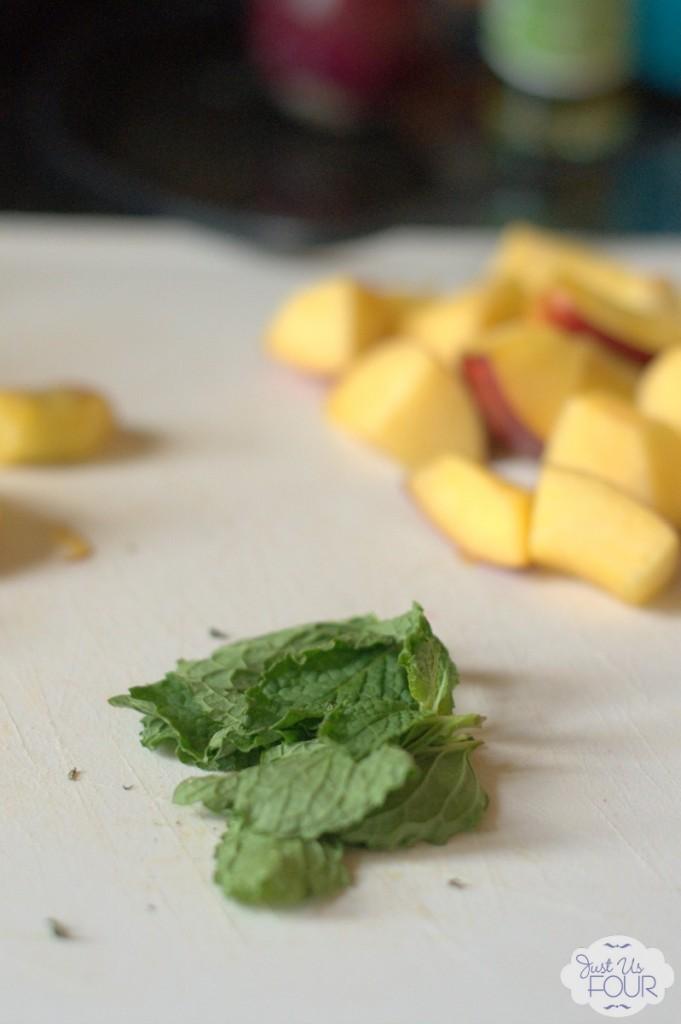fruit-kabobs-mint_wm