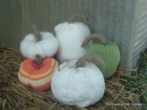 04 - Country Chic Cottage - Sweater Pumpkins