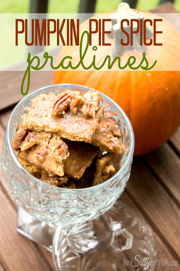 21 - This Silly Girls Life - Pumpkin Spice Pralines