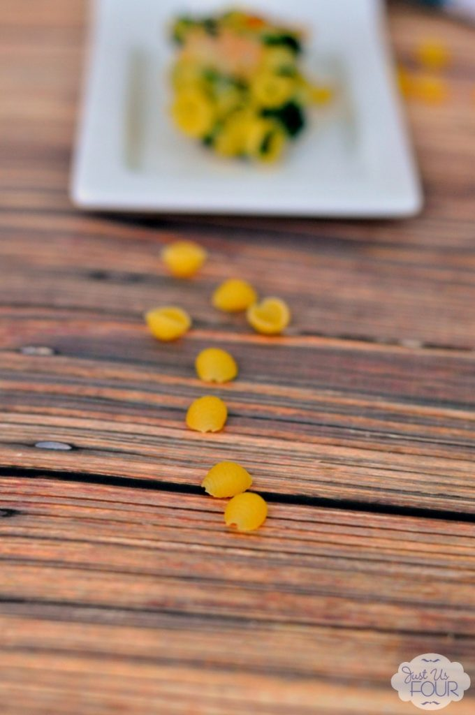 turkey-macaroni-cheese-bites-pasta_wm