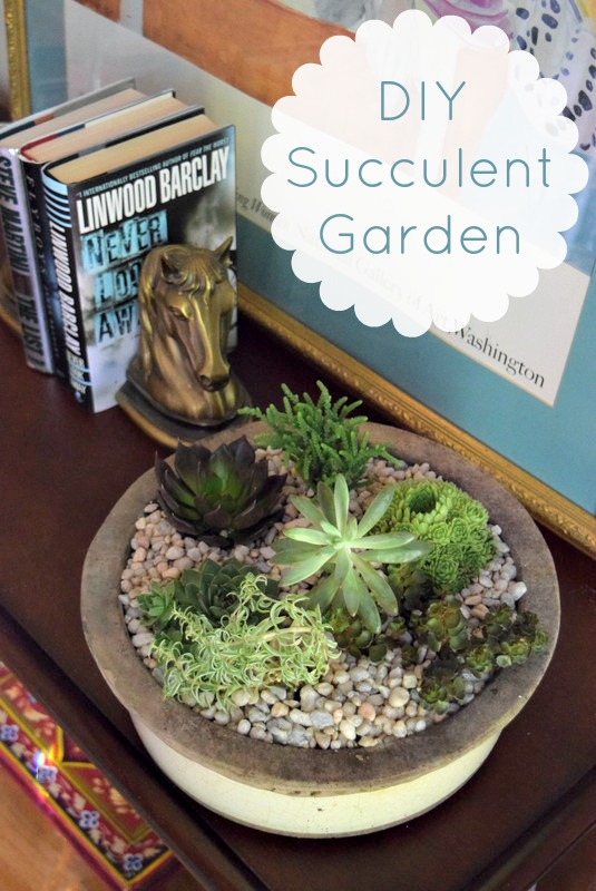 02 - Domestic Superhero - DIY Succelent Garden