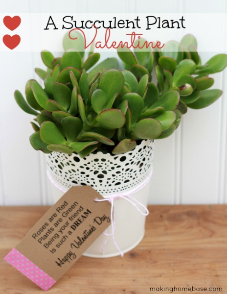 06 - Mom 4 Real - Succulent Valentine