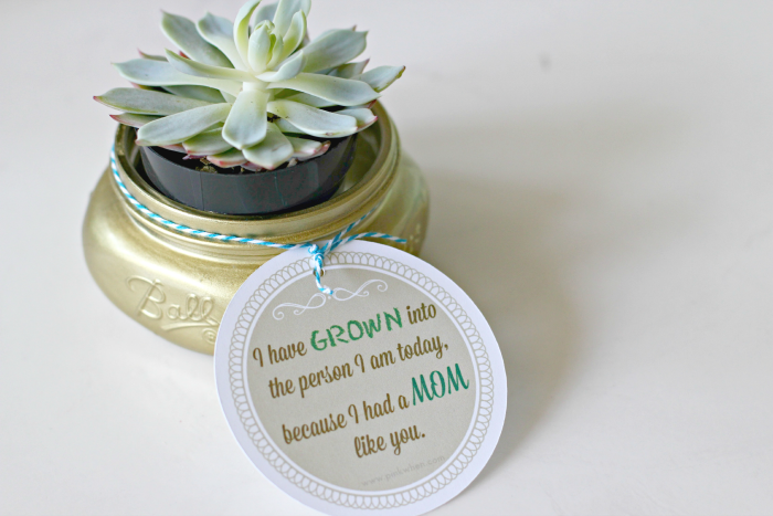 10 - Mom 4 Real - Mason Jar Succulent