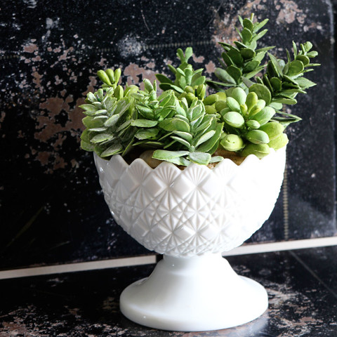 27 - House of Hawthornes - Milk Glass Succulent Planter