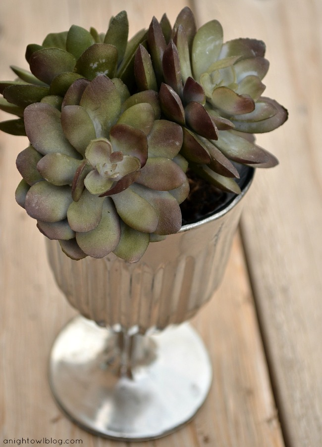 28 - A Night Owl - DIY Mercury Glass Succulent Planter