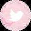 64pt_twitter