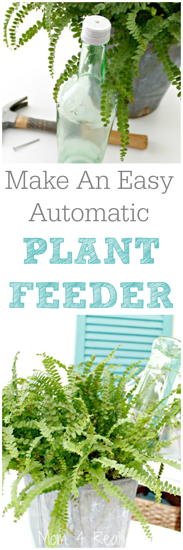 06 - Mom 4 Real - DIY Automatic Plant Feeder