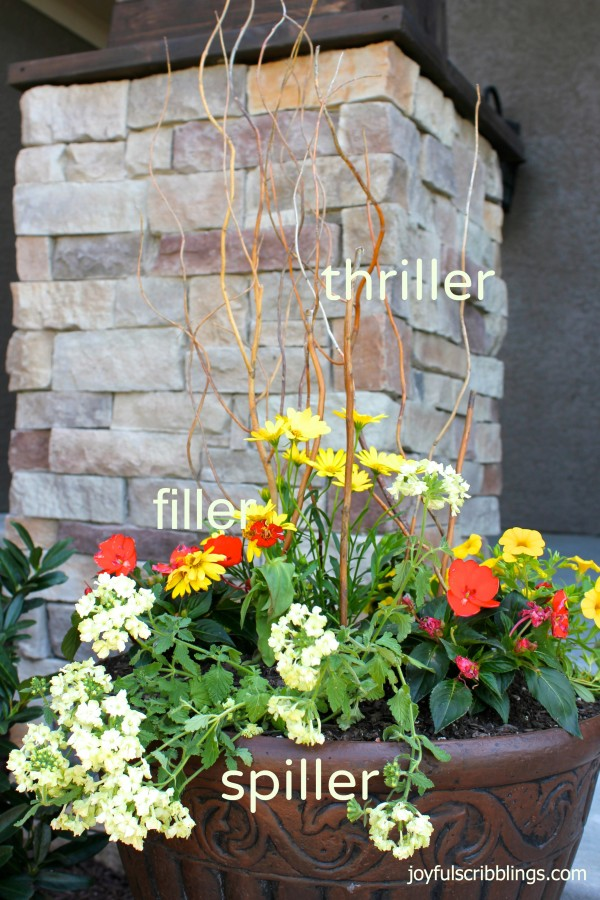 16 - Joyful Scribblings - Container Gardening Tips