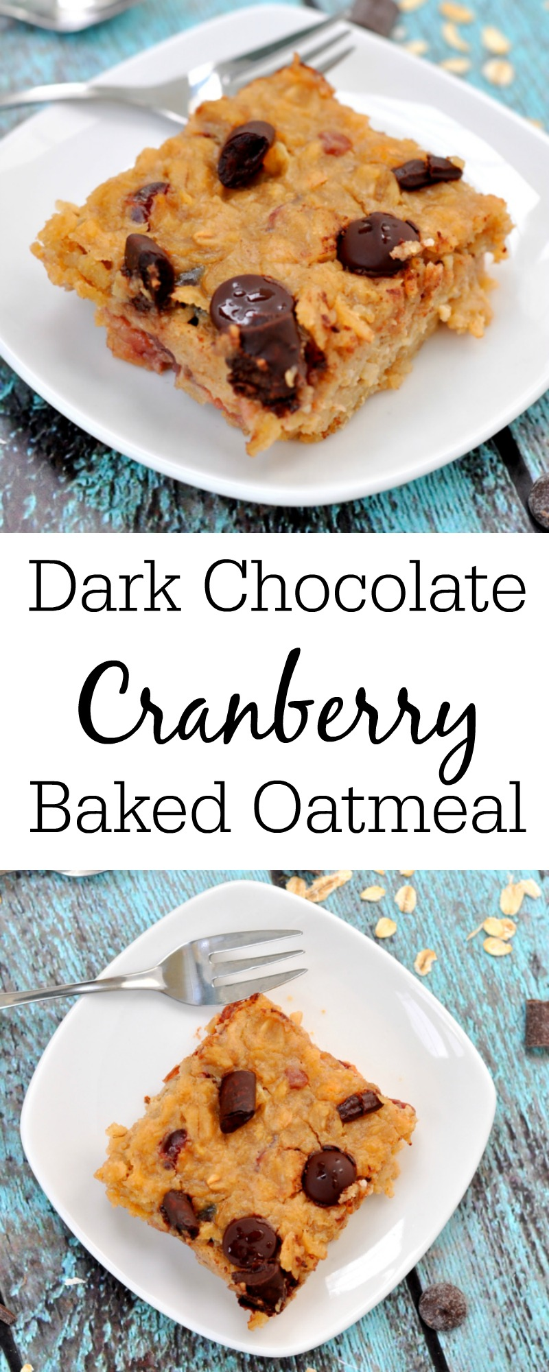 Dark Chocolate Cranberry Oatmeal Bars