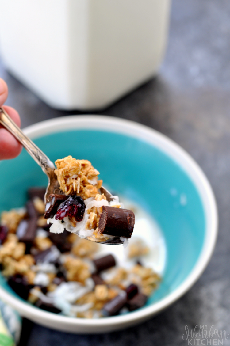 Dark Chocolate Chunk Granola Cereal