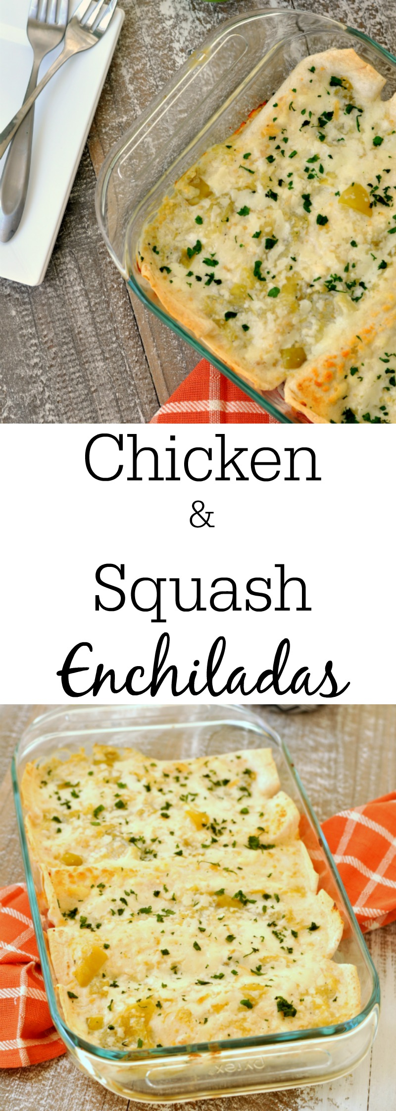 Chicken and Summer Squash Enchiladas