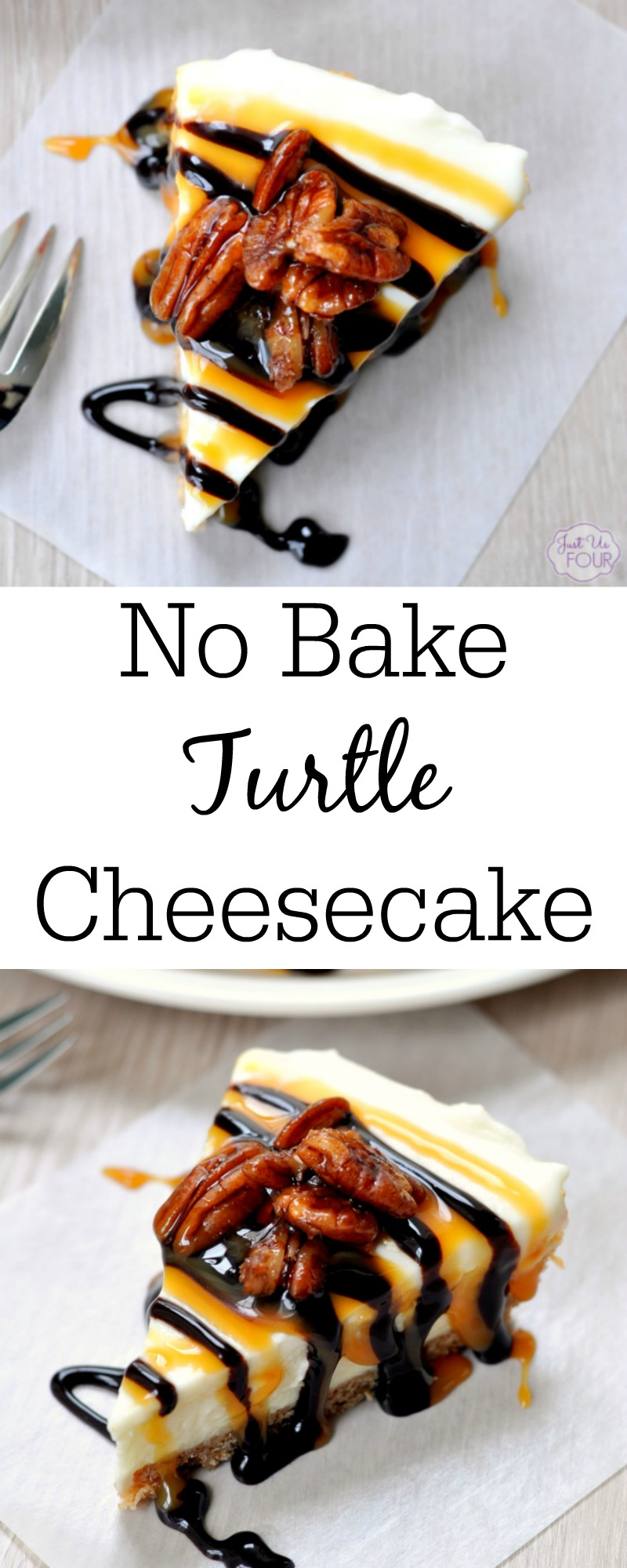 No Bake Turtle Cheesecake