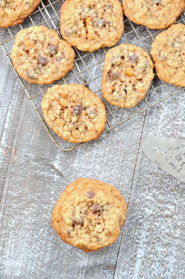 Overhead photo of oatmeal scotchie cookies