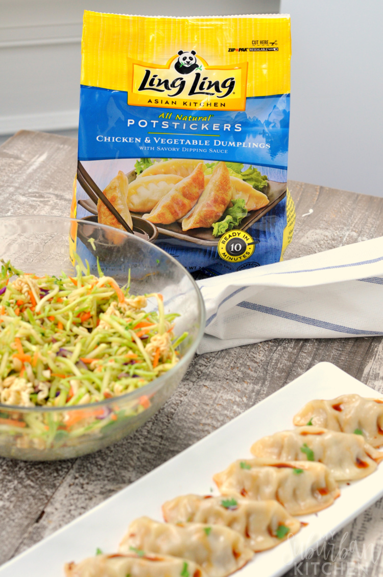 Photo of Potsticker Bag